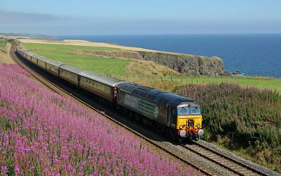 Trains - August 2014