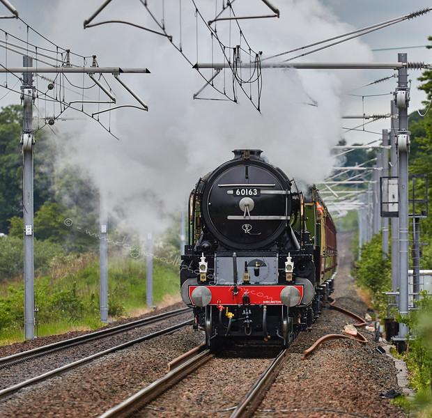 Tornado (60163) approaching Greenfaulds Station - 20 June 2015