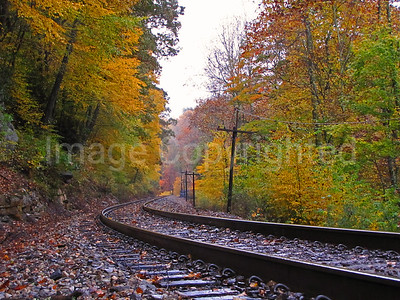 Fall train rail line - 10/24/11