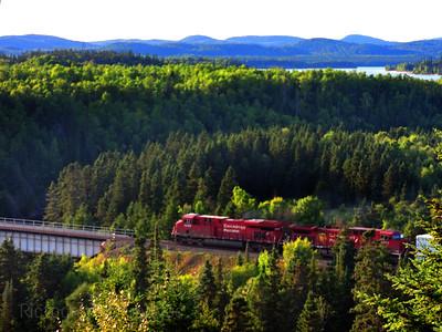 Train Moving Goods Through