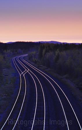 Shiny Tracks