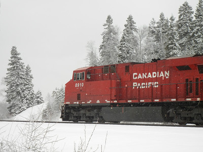 Winter Train & Trees