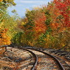 Tracks into Autumn