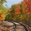 Tracks into Autumn