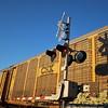 CSX Signal