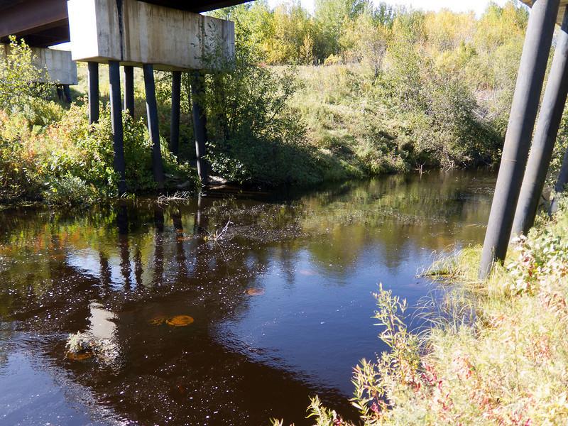 Under railway bridge over Store Creek