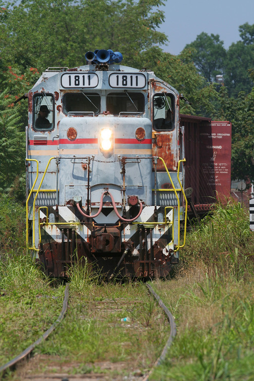 CWCY 1811 snaking through the grass in Hudson, NC.