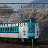 Kuroshio Limited Express, Nagaokakyo, Kyoto-fu, Japan