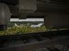 Otter Rapids dam. Seen through gap between coach and track.