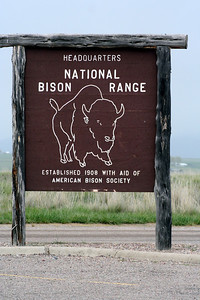 The Bison range has been around since 1908 and this was the first time I ever visited it. Been to MT several times but did not know that this place was even there. Now I know. :)