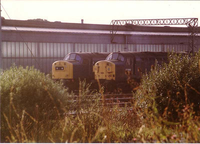 40152, 37090,  Carlisle Kingmoor yard SP 18 August 1983.