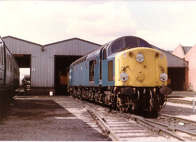 40086 on HA depot, Edinburgh. 16 Aug 1983