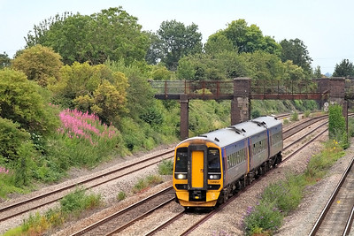 With Rosebay Willow Herb adding a splash of colour to thye scene the 19.30 Cardiff Central to Poretsmouth Harbour formed of 158952 passes through the cutting at Undy. 12/07/2011