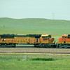BNSF 8896 - Moorcroft, Wyoming - 4 July 2011