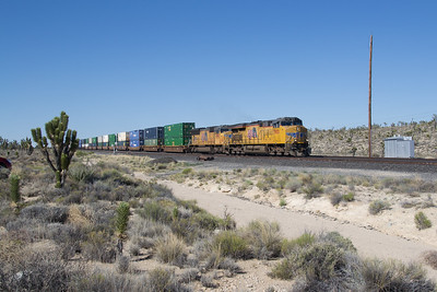 UP 7901 heads a hot Stack Train at Cima, CA