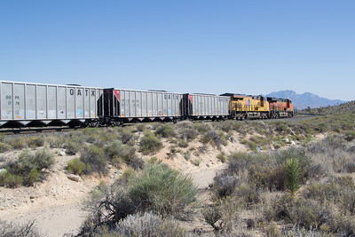 BNSF 8291 and coal train starts down the west slope of Cima Hill at Cima, CA