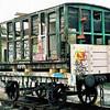 1577 LBSCR 4 Plank Flatbed  - Bluebell Railway 18.01.09  David Wigley