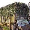 No No. Vent Van Plank 'Mink A' b/o - Elm Croft Farm, on A390, Penpillick, Nr St Blazey