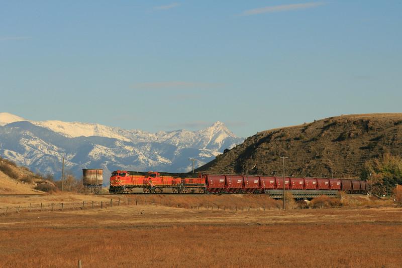 Grain loads @ Logan, MT