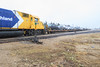 Locomotives back in to pick up flatcars for vehicles heading south today.