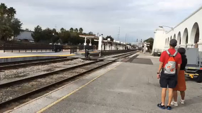 Penny Jacobs' video of the second baggage train