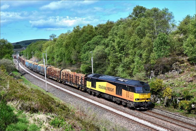 2018 05 16.60085 on the  12.57 6J37  Carlisle-Chirk Kronospan timber service at Greenholme.