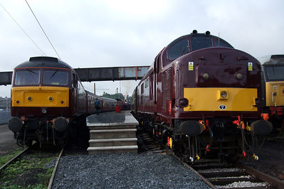 47786 and 37676 stand at the platform.
