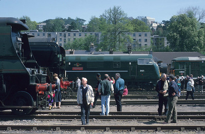 In 1994, public open days were still a common feature on Britain's railways. Today the industry has practically given up in the face of silly health and safety rules. D821 'Greyhound' is seen in the company of two Southern Pacifics, a 'King' and an electro-diesel at Exeter Riverside Yard. 2/5/94