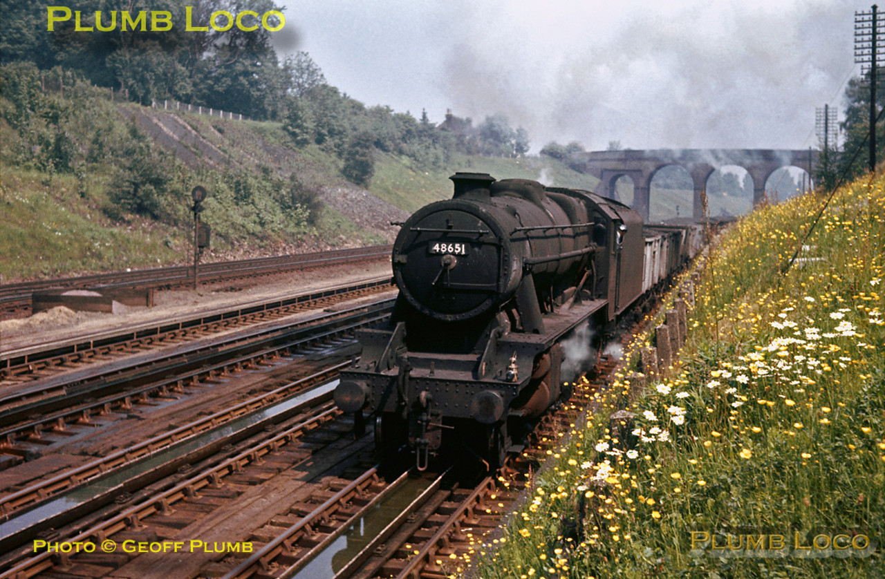 LMS Stanier 8F 2-8-0 No. 48651 trundles southwards on the up slow line at Bushey Troughs with a train load of coal behind the tender in 16 ton wagons. The embankment side is covered in wild flowers - presumably they got well watered! Friday 7th June 1963. Slide No. 88.