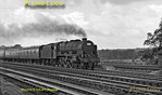 """LMS rebuilt """"Royal Scot"""" Class 4-6-0 No. 46167 """"The Hertfordshire Regiment"""" is working a northbound express on the down fast line as it approaches Bushey Troughs on Tuesday 21st August 1962. BWNeg165."""