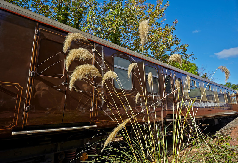 Pampas Grass Setting for the Statesman Rail Tour in Garelochhead Station - 13 October 2013