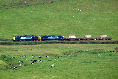37602 and 37218 with three FNA flask wagons pass a herd of fresian cows in the St Bees valley. 09/07/11.