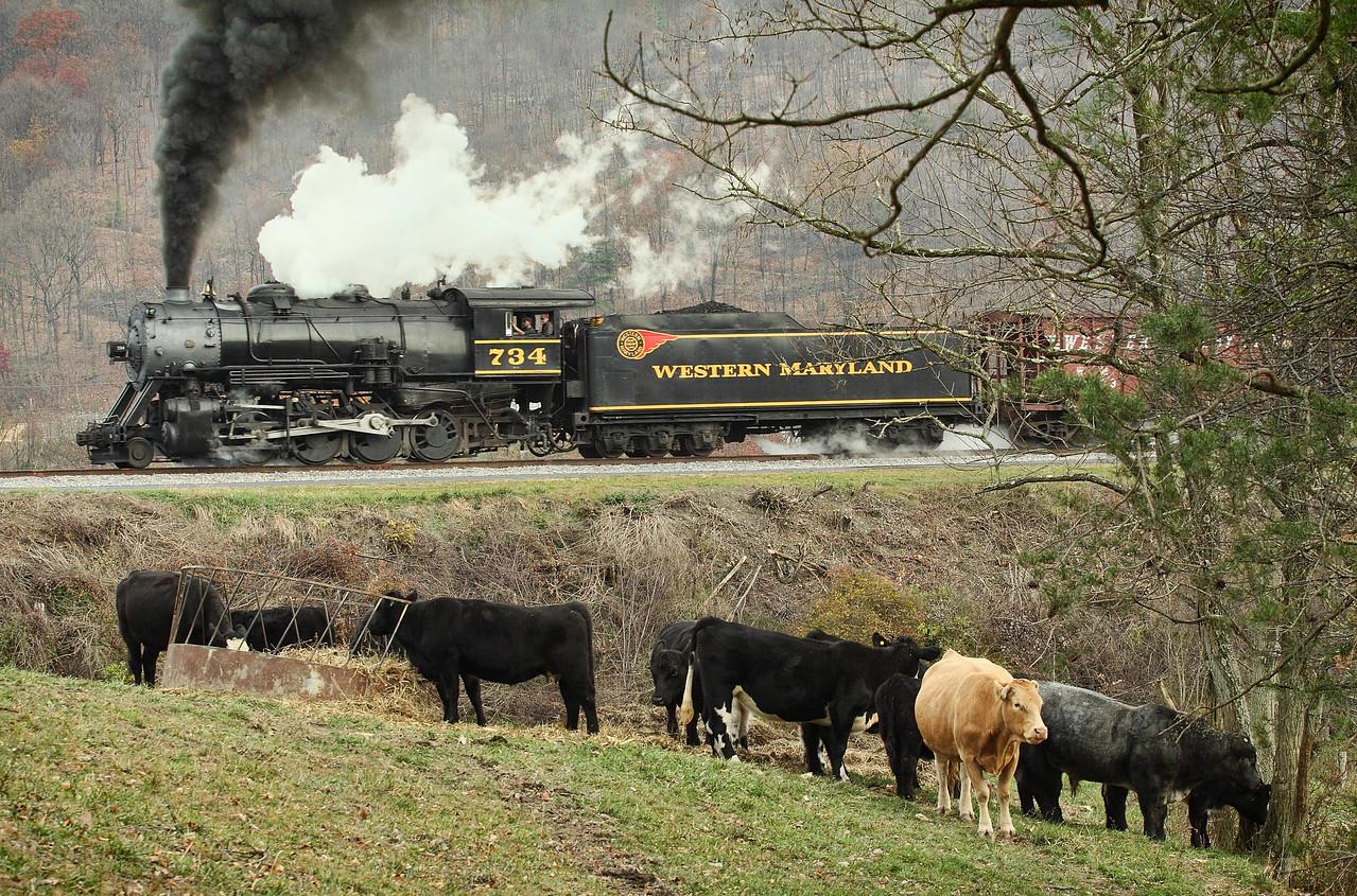 Western Maryland Scenic Railroad, between Cumberland & Frostburg