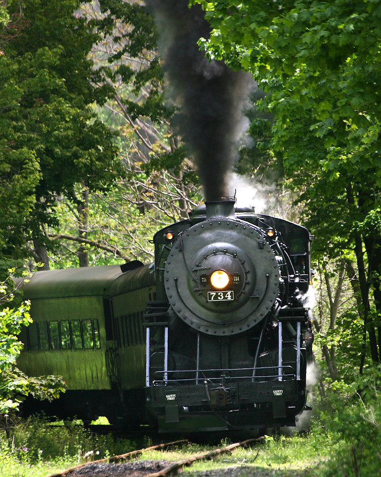 #734 steam engine passing through the thick brush Western Maryland Scenic Railroad