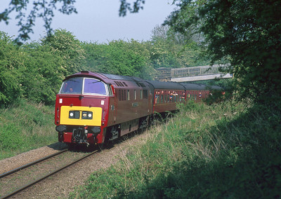 D1015 in Yorkshire whilst on a visit to the NYMR in 2008.