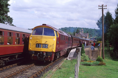 D1062 'Western Courier' waits at Arley whilst passing a southbound train there. 13/8/94