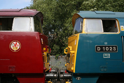 D1015 and D1023 come face-to-face at Barrow Hill shed in 2009.