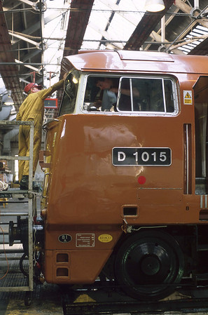 A labour of love. And who can blame them? DTG members spent thousands of man hours restoring D1015 to main line line running condition, much of them inside the (now demolished) 'Factory' at Old Oak Common depot.