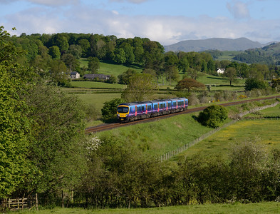 185116 forms the 07.56 Windermere-Oxenholme on 8/6/15, seen inbetween Burneside and Kendal.