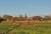 66076 6B21 Margam to Robeston at Llandeilo Junction 26/4/15.