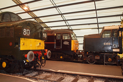 D6700, 47798 and D200. 24/02/11.