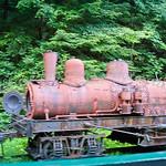 Cass Logging Railroad 2006-060722-341