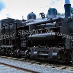 Cass Logging Railroad 2006-060722-004