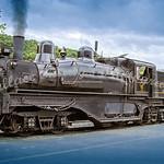 Cass Logging Railroad 2006-060722-021
