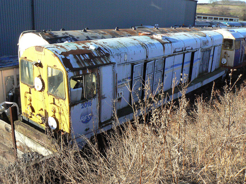Ex-channel tunnel construction loco '2016' (20105) at Barrow Hill Roundhouse. Saturday 30th January 2010.