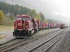 25 September 2008 :: Canadian Pacific ES44AC no. 8709 with AC4400CW no. 9766 waiting to depart east from Field
