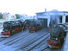 27 July 2012 :: A late evening view of Wernigerode shed with locomotives left in steam ready for the following days services
