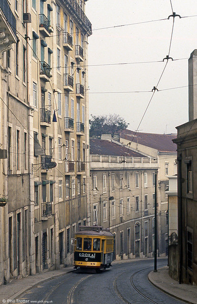 Car 704 climbs Calçada São Francisco on 27th November 1993.