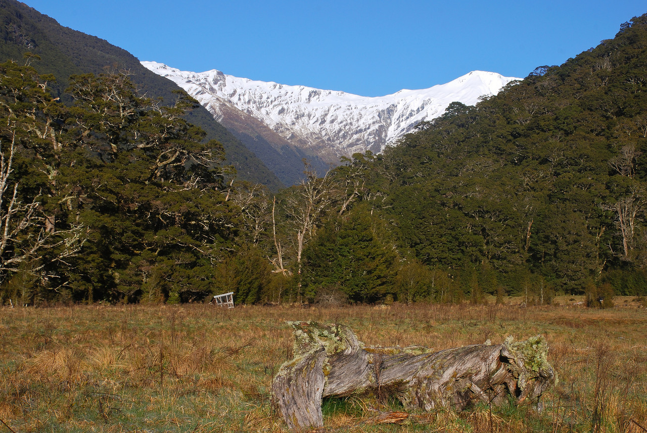Meat Safe Flat, with peaks pt 1930m and pt 1828m above the Alber Burn North Branch