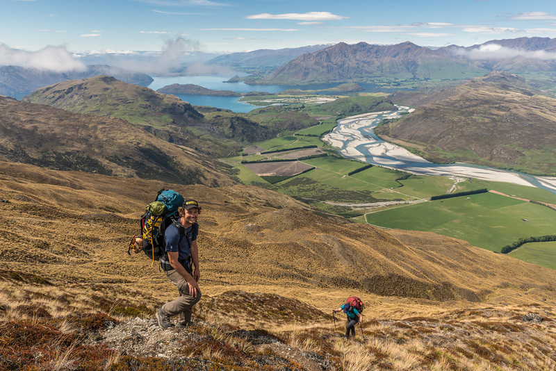 Climbing the Buchanan Peaks' south-west spur. Lake Wanaka and the Matukituki River below; Roys Peak, Mount Alpha and Middle Peak on the skyline, right